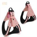 GMTPET Pet factory wholesale Pet dog car harness for girls 109-0007 GMTPET Pet factory wholesale Pet dog car harness for girls 109-0007